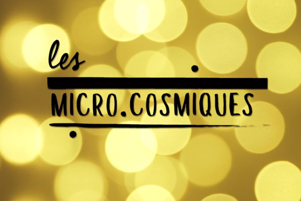 Micro.cosmiques #1 Brinker
